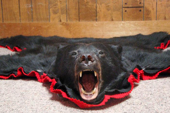 Black Bear Rug ...